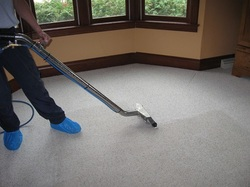 carpet cleaning company in oakville, ON