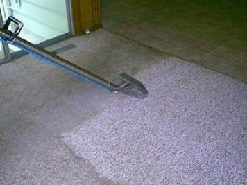 Carpet cleaners in oakville on